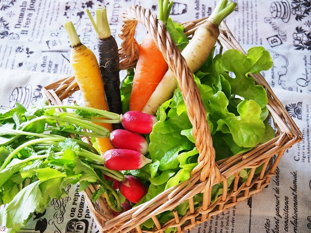 青汁のダイエット効果が健康に良い理由